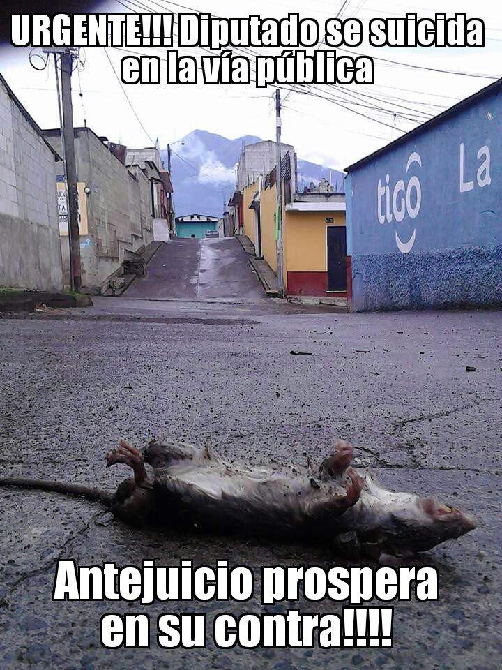 Se suicida Diputado de la Nación, es encontrado en la calle