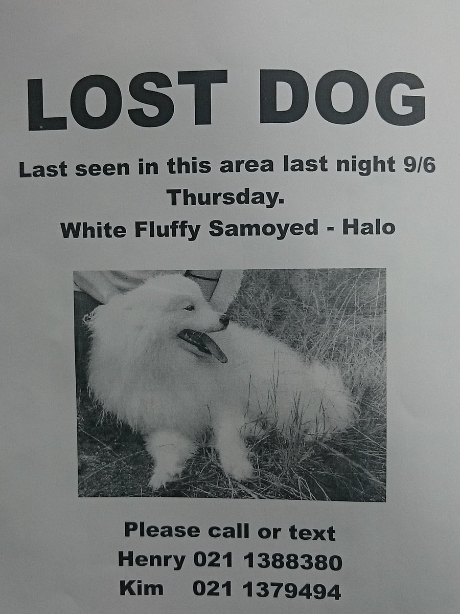 Lost dog in new Lynn Auckland please retweet https://t.co/yUeUl1TyPF
