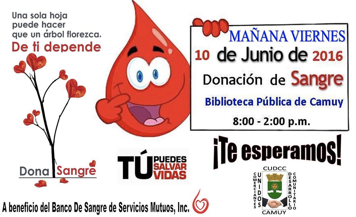 Dona Sangre PR (@DonaSangrePR)   Twitter