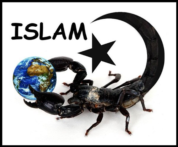 Image result for capitulation to Islam
