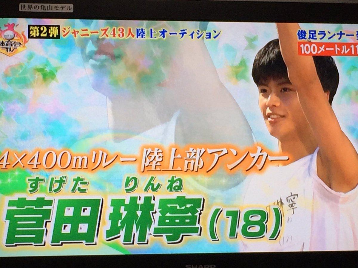 「炎の体育会TV  菅田りんね」の画像検索結果