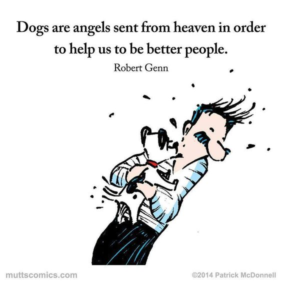 Dogs are angels...... https://t.co/5UR5eYyHRW