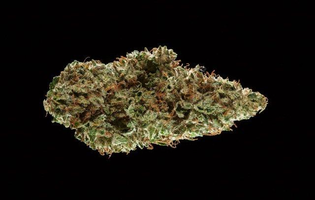 2016 Michigan Medical Cannabis Cup: Sativa Flower Entries