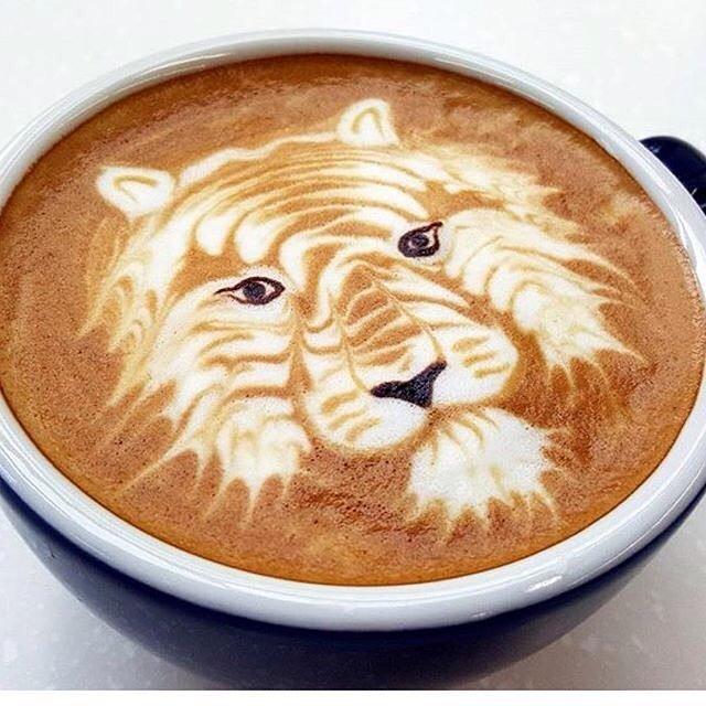 Il Caffè non fa venire il Cancro