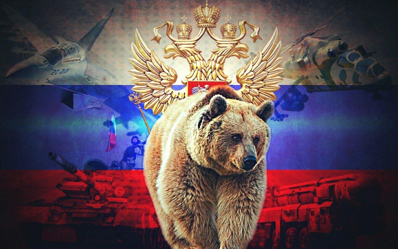 Картинки на телефон россия медведь