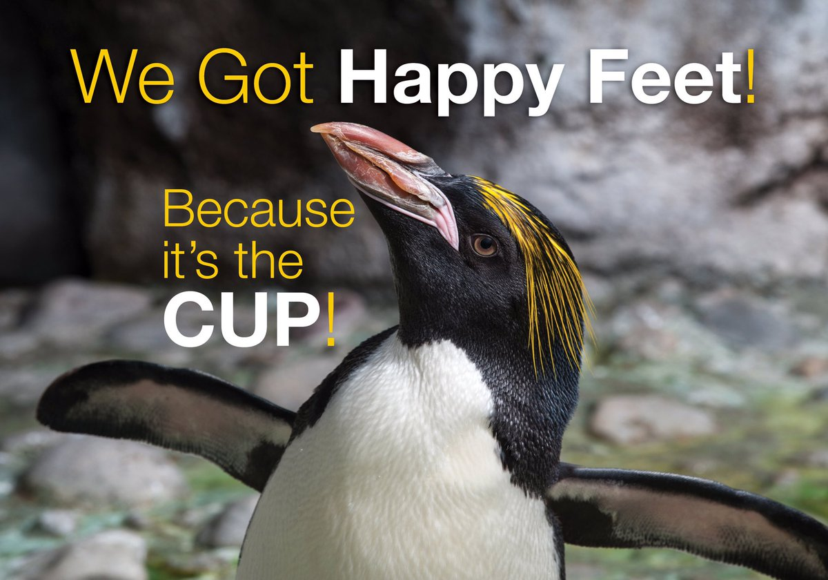 Congratulations @penguins! #BecauseItsTheCup #LordStanley #Champions #zooforall https://t.co/jktrVJt9TL