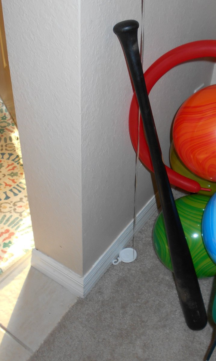 North Port Police On Twitter Cat In The Hat With A Bat Burglary