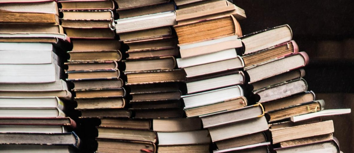 good term paper books A good idea is to surprise or puzzle the reader's intuition (much like the purpose of the economic naturalist assignment) in this section so that he or she would be curious to read the rest of the paper.