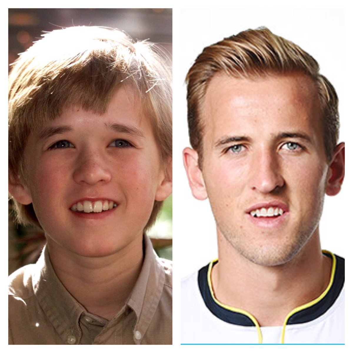 Image result for harry kane haley joel osment