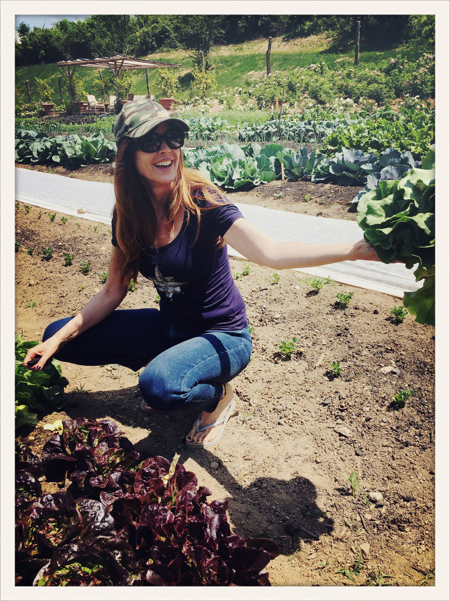 Cutting my salad for lunch-Right from the earth: Butter lettuce... #foodie #farm #salad #earth https://t.co/vlNz8iGwmg