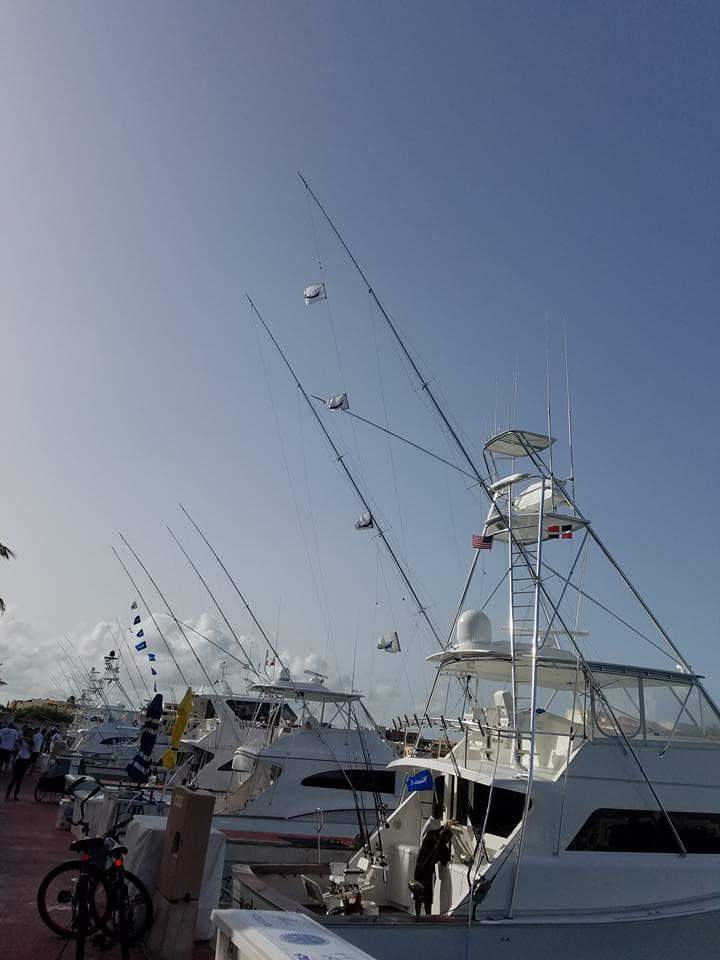 Cap Cana, DR - Black Gold went 4-4 on White Marlin and 1-1 on White Marlin.