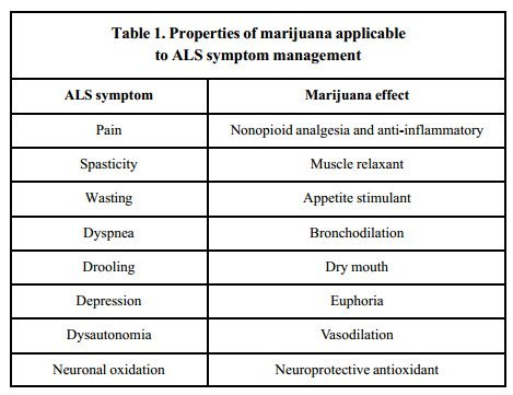 The Medical Minute: How Does Cannabis Impact the Progression of ALS?