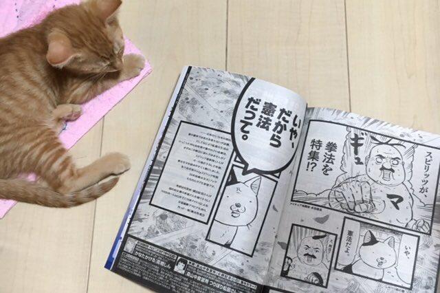 次号予告(日本国憲法が付録でつくそうです)で絵を使ってもらってます。 https://t.co/ijweXqGlCM