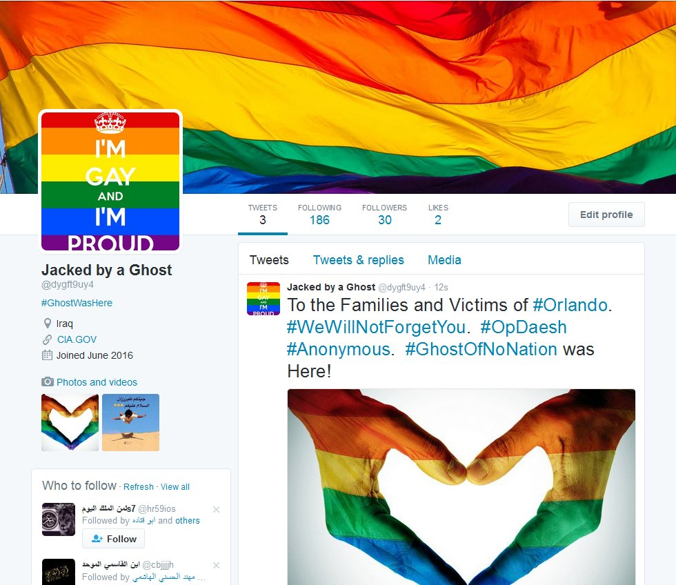 Islamic State Twitter accounts get a rainbow makeover from