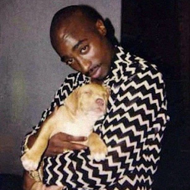 Happy bday to the greatest rapper/humanitarian of all time. Photo of him and a dog I gave … https://t.co/Avbde6Neak https://t.co/M2Kjq9Cucg
