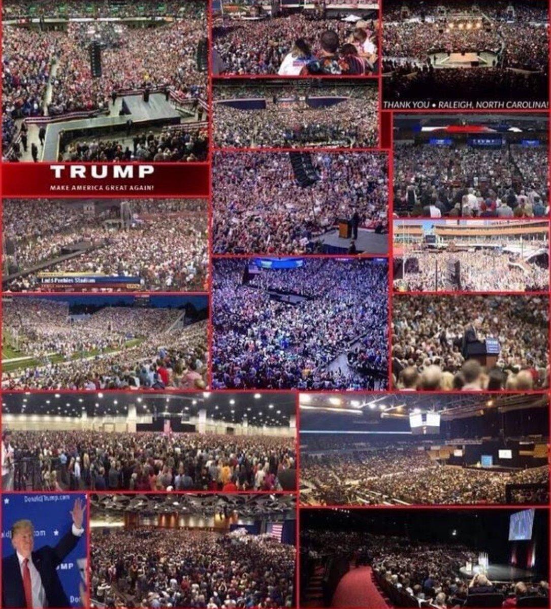Trump Crowds