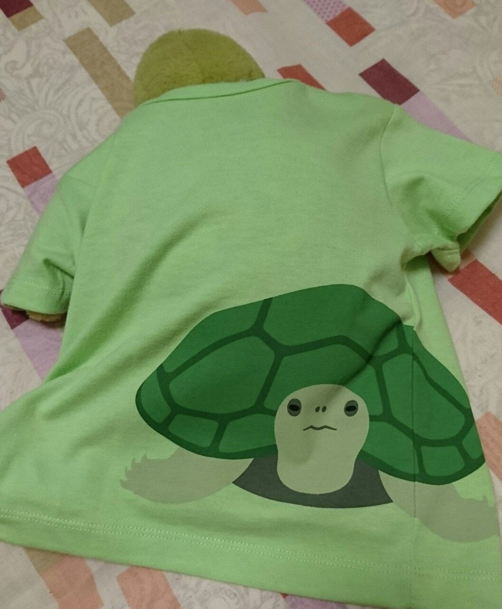キッズしかないのでベビー用買ってかめたんに着せました。大きいねー #かめ #カメグッズ #カメTシャツ #無印 良品pic.twitter.com/xurL3RyXsb