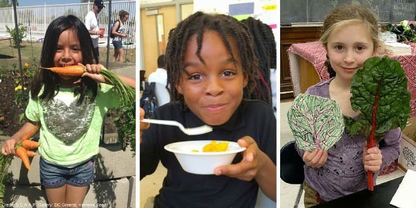 Many kids get more than half of daily calories at school. #Farmtoschool makes sure those calories are healthy ones. https://t.co/tXfai5nTtt