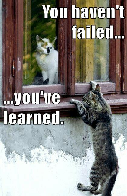 this #growthmindset cat understands learning by making mistakes. More at blog: https://t.co/UQC0sct8cj #MindsetPlay https://t.co/DGbhMcTGWk
