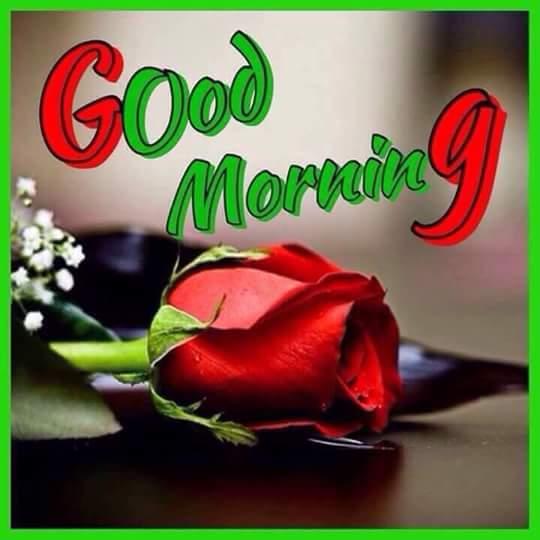 Nishansinghinsan On Twitter At Gurmeetramrahim Papa Ji Sweet Sweet