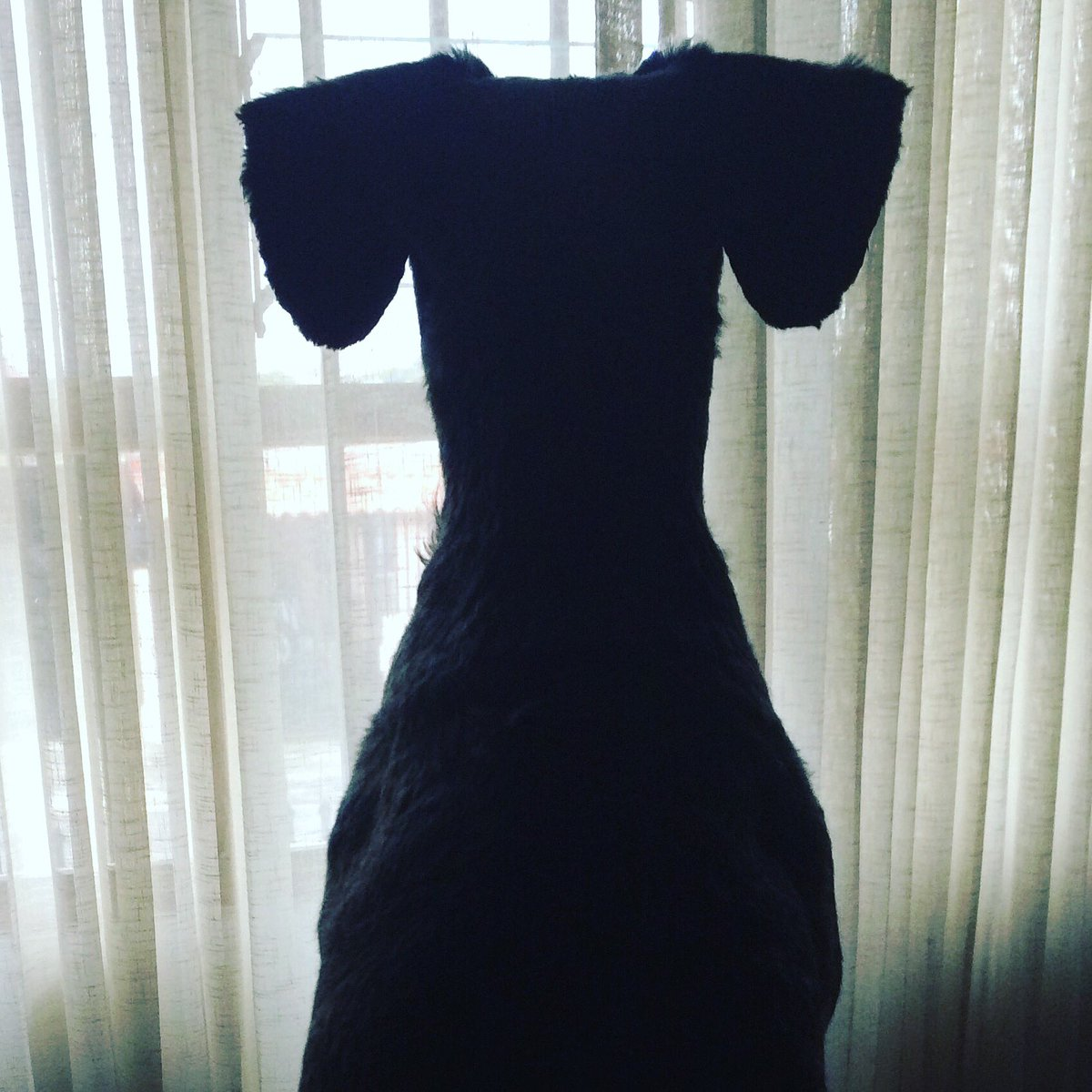 ¿Qué ven en esta foto? Like si ven un vestido, RT si ven un perro.