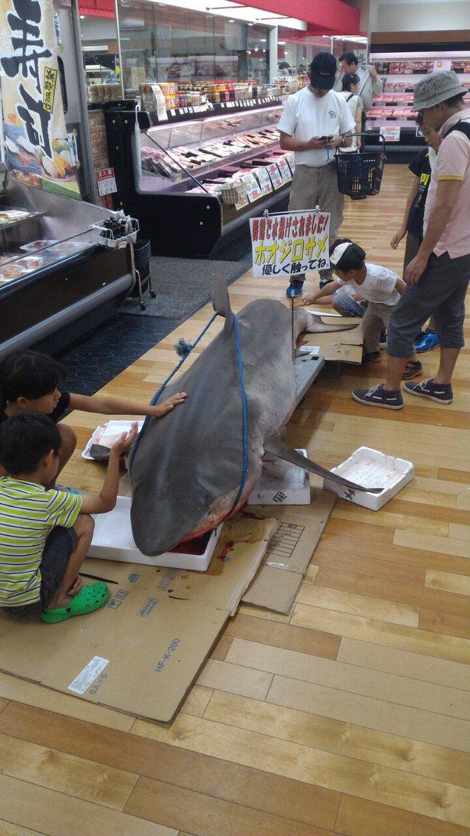 近所のスーパーの鮮魚コーナーの様子です。ご確認下さい。 pic.twitter.com/DueAh7a43o