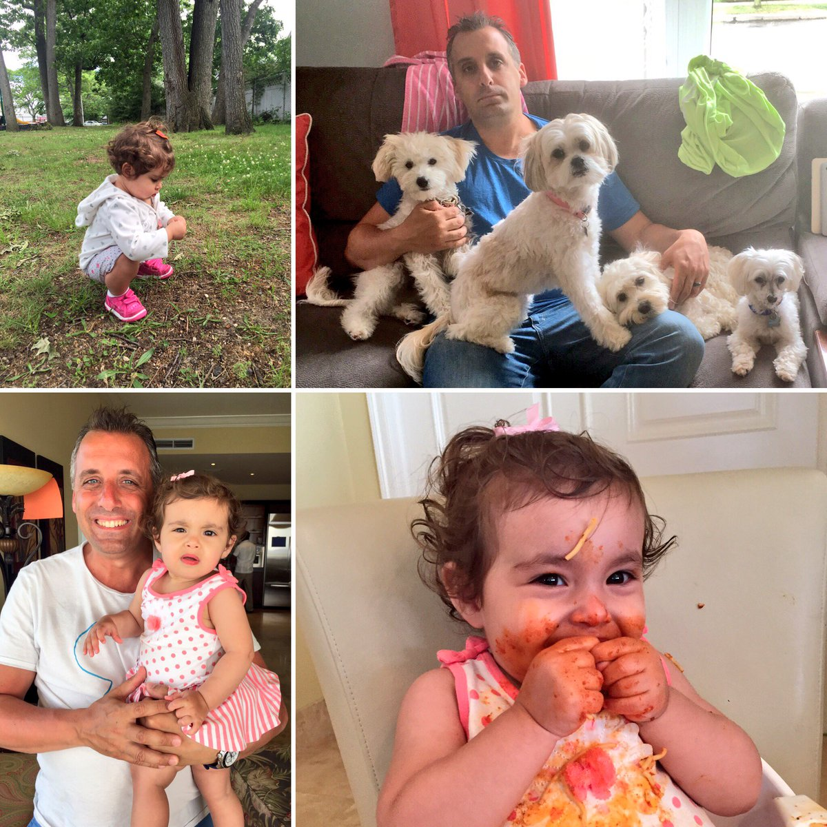 Joe gatto on twitter quot celebrating today w all my babies love being