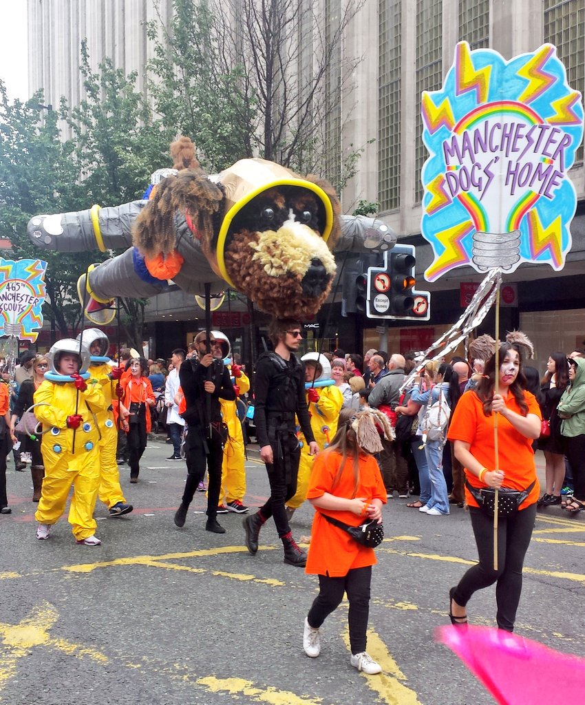 One of my favourite #ManchesterDayParade participants today was @manchdogs and their astrodoggy 🐶🚀 #McrDay16 https://t.co/uLZE1aG3bg