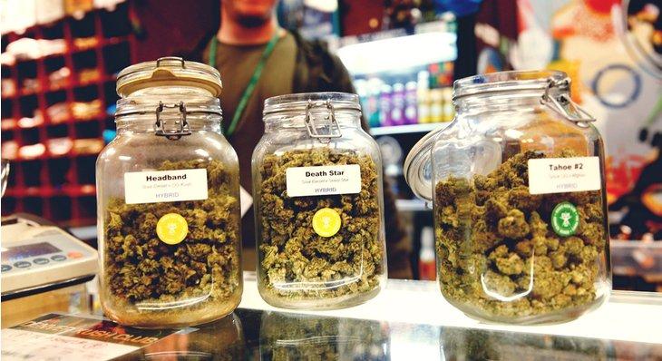 Colorado Marijuana Shops Shattered Record with 4/20 Sales