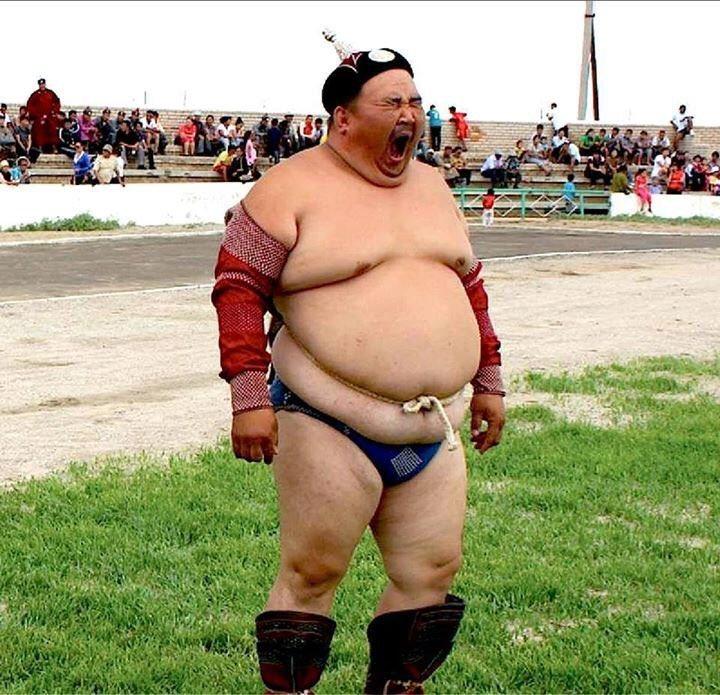 первым смешные фото толстяков на аву онлайн-консультация поможет получить