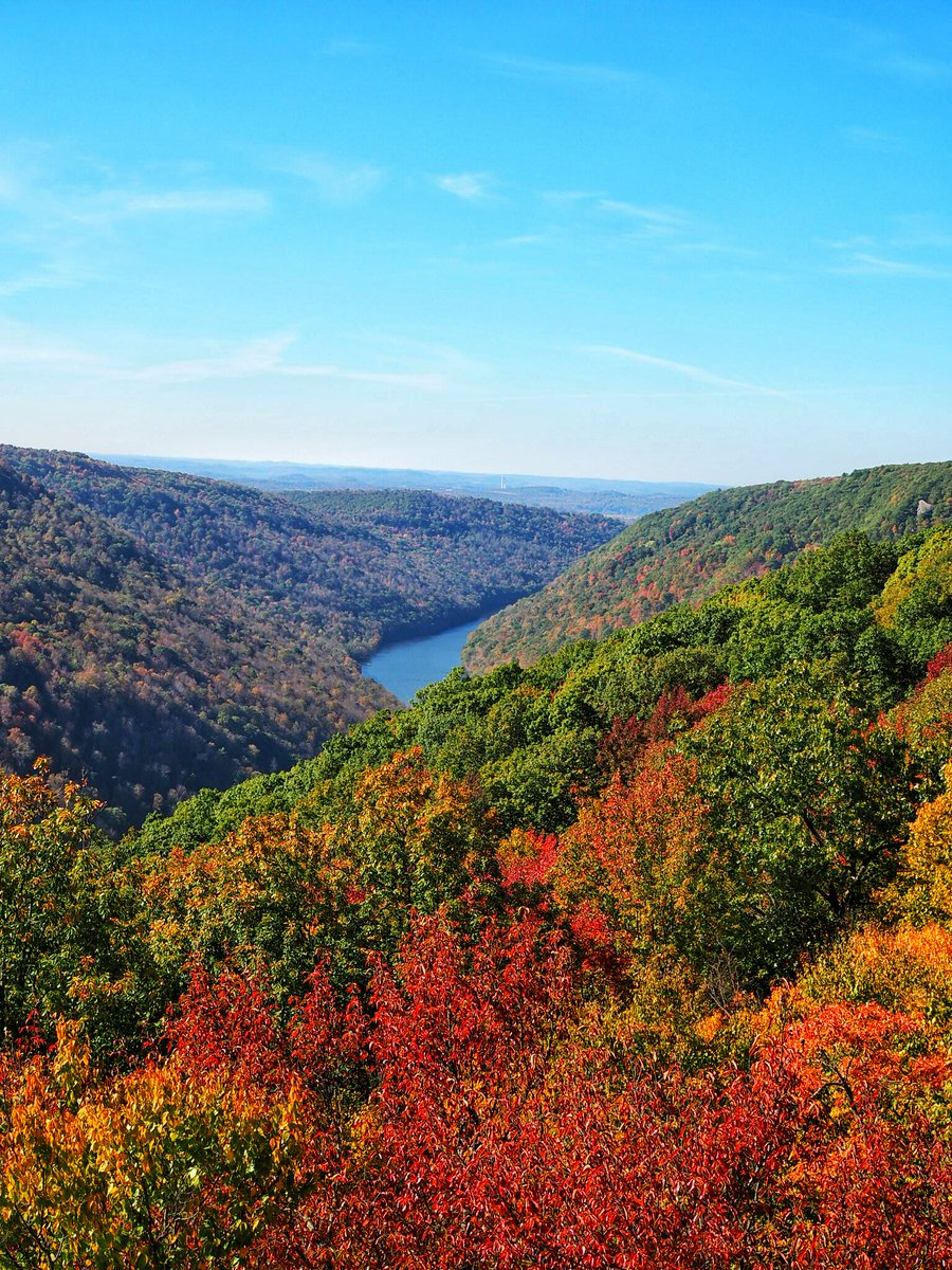 Today, we honor the wild and wonderful state we call home. Happy 153rd birthday, West Virginia!