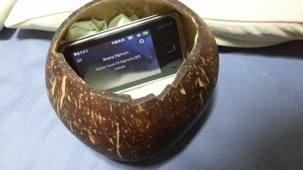 上海から持ち帰った椰子の実がウーファーになりました。心地よいドンシャリ。