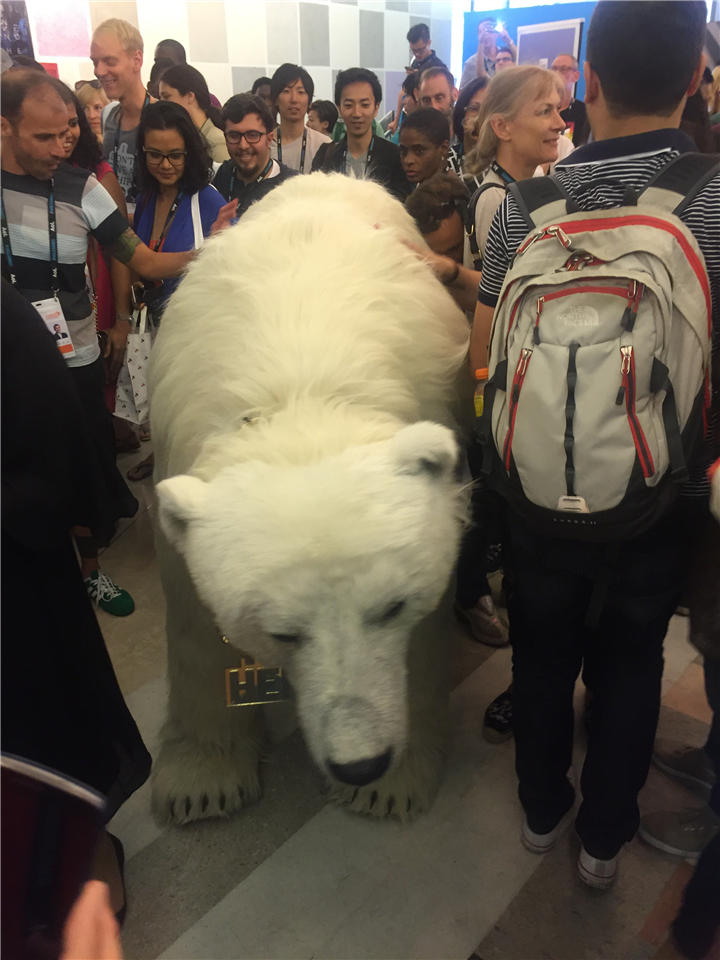 Publicity Stunt or the real deal? A polar bear in Le Palais.