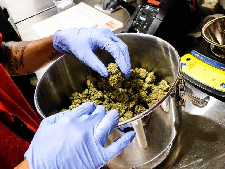 California Democrats Embrace Pot Legalization