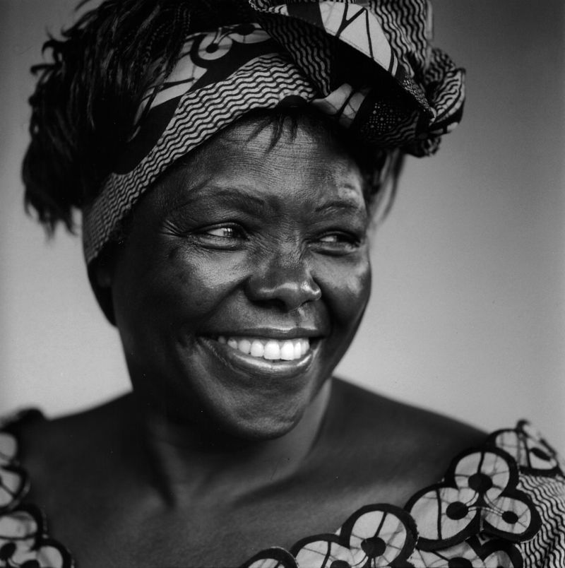 """It's the little things citizens do. That's what will make the difference."" Wangari Maathai #quotes https://t.co/9xPTiU7MfG"