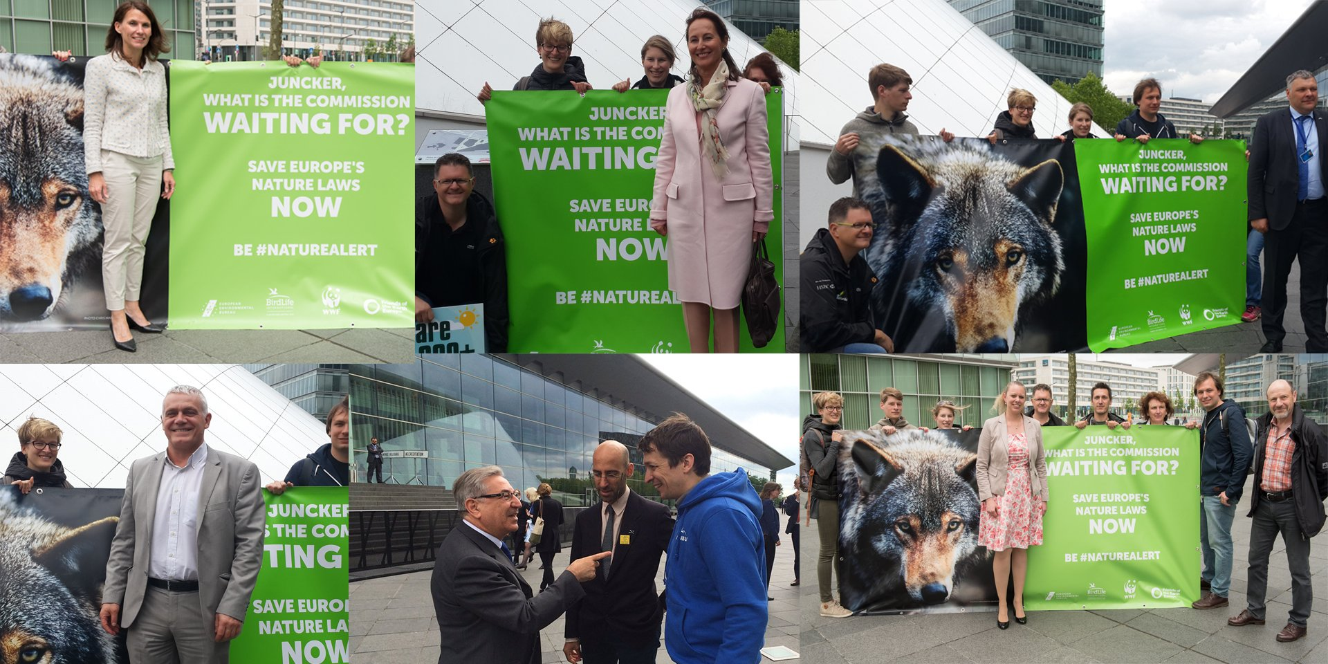 #Environment Ministers ask @JunckerEU to save Europe's #Nature laws https://t.co/5F9aFSDhZL #NatureAlert https://t.co/xysGmjf4Q8