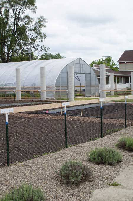 A New Kind of Urban Farm in Detroit  #greenspace #health #GrowTown