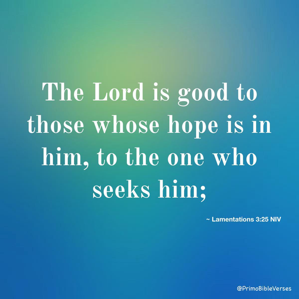 Lamentations 3 25 niv bible bibleverses lamentations desireverses waitingverses