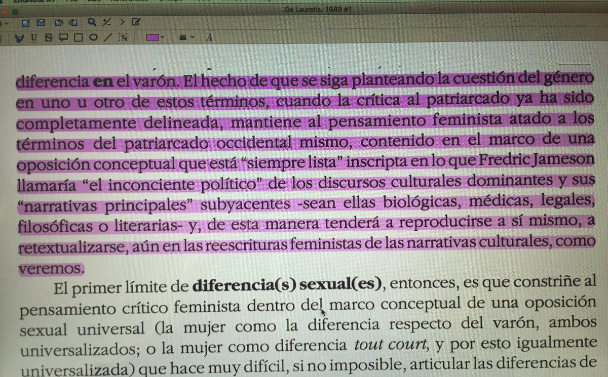 Pum! #TeresaDeLauretis #SeminarioMD @DialogoSurNorte