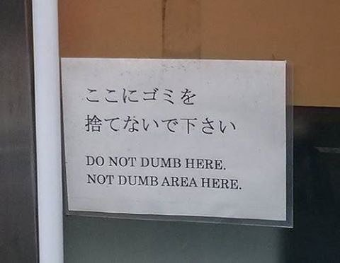 Do not dumb here. Not dumb area here. https://t.co/rIdWwTgUM8