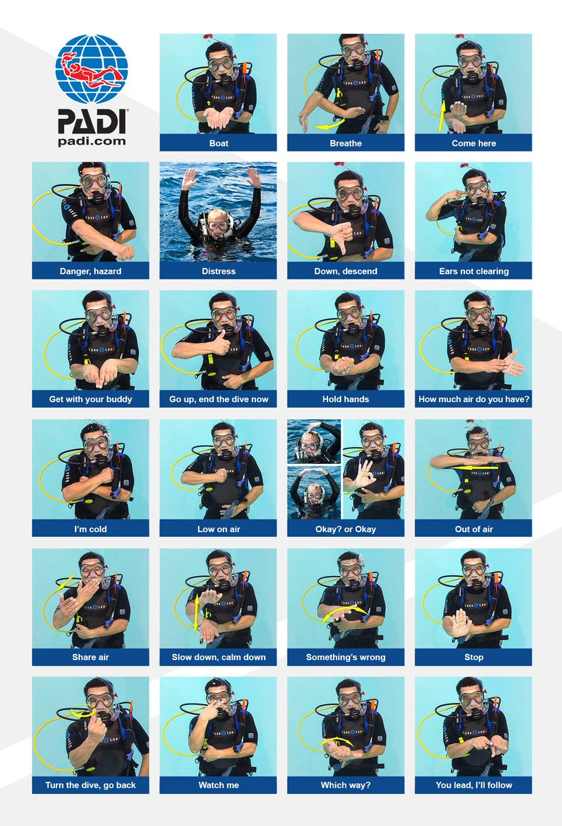 Image result for padi hand signals