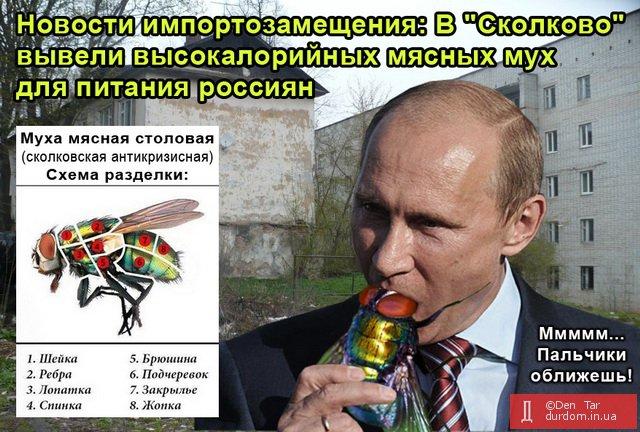 В последнее десятилетие в России стали чаще есть собак, - Роспотребнадзор - Цензор.НЕТ 1140