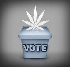 The Big Picture: State-By-State Marijuana Ballot Initiative Update