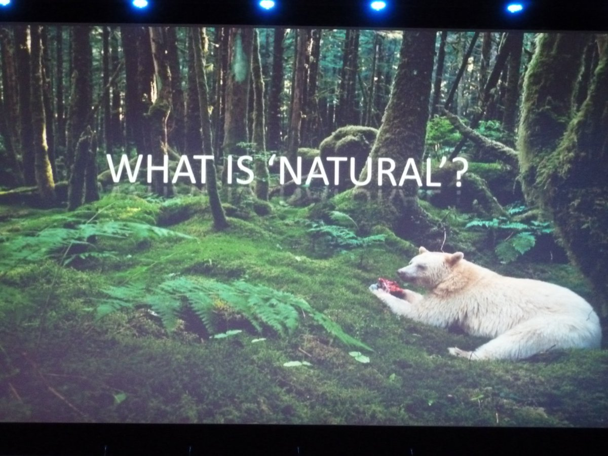 "And yet another question raised at the #SynbioForum, part three: What is ""natural""? https://t.co/5IJYS3DxZC"