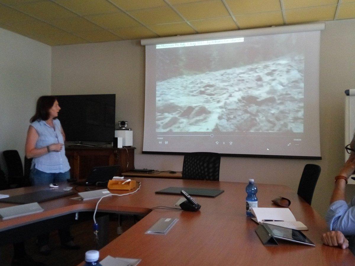 Pia Rosella Tecca (CNR IRPI) talking at the Domino kickoff meeting.@WaterJPI @CNR_IRPI