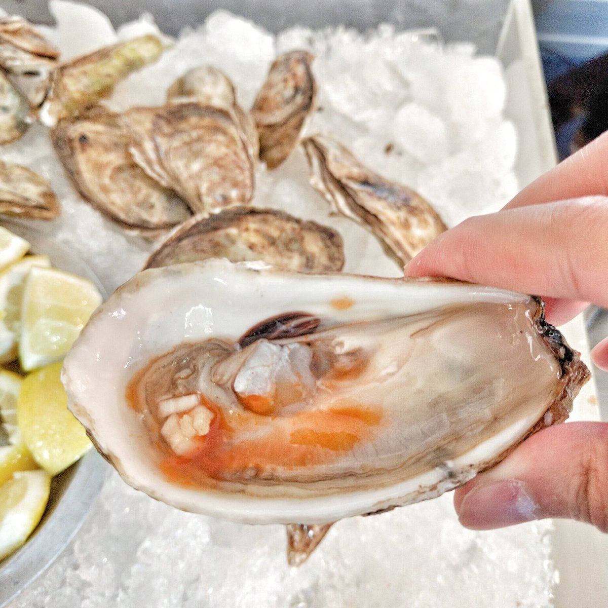 Oysters on the Half Shell from Richmond Station at Taste of Toronto