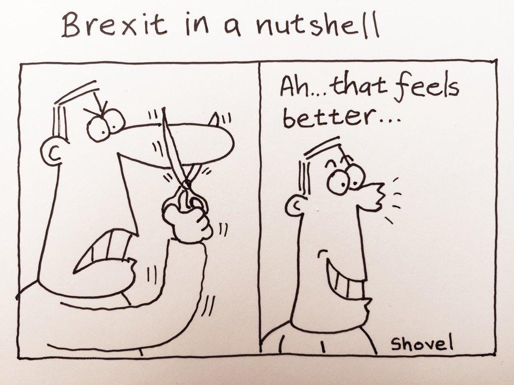My cartoon - #Brexit in a nutshell #r4Today   https://t.co/l3YIFteKu7