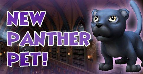Panther Pet
