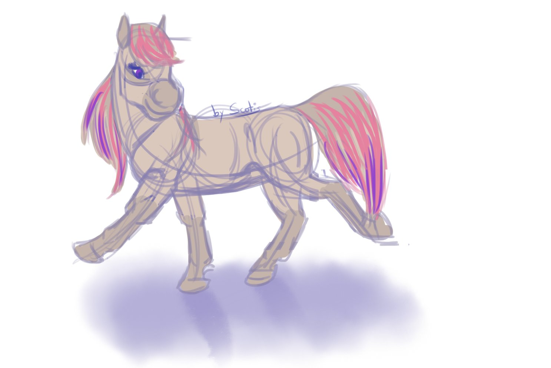 Les poneys de Scotis Cm4ZasRWIAAS6Gk