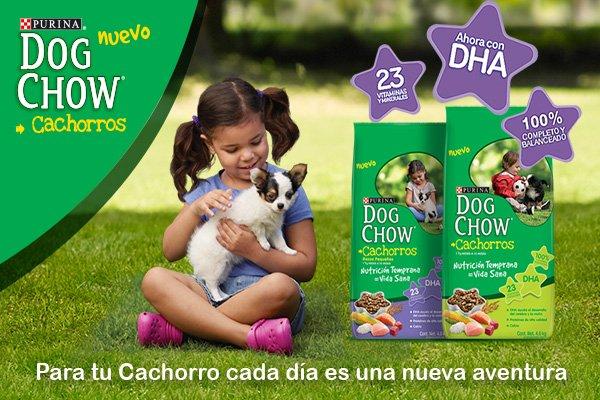 Dog Chow Cachorro #OmniPet #PetShop #DogChow<br>http://pic.twitter.com/cd4Q17JuFt